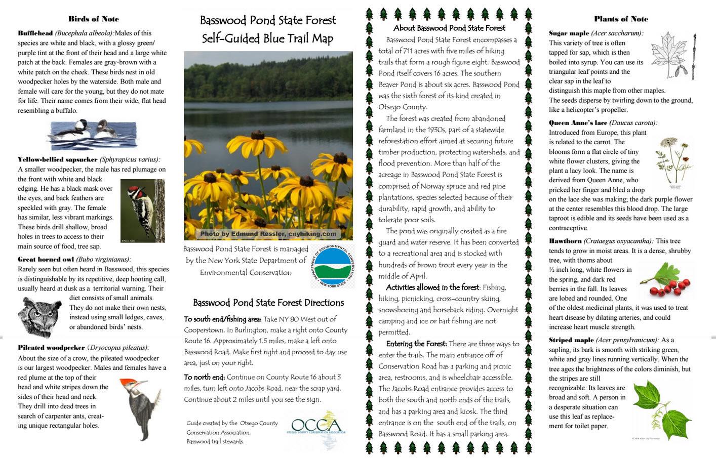 Brochure1-updated